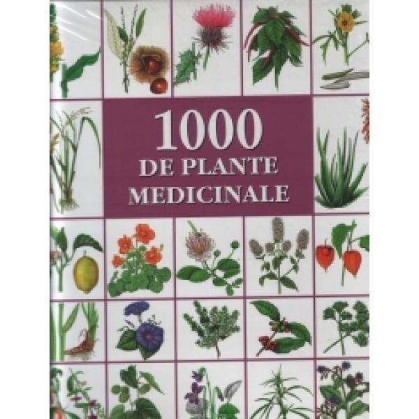 tablete de la mașini varicoase pe plante medicinale