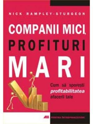Companii mici. Profituri mari