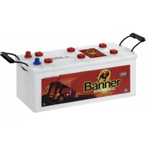 BANNER Buffalo Bull SHD PROfessional 180 Ah