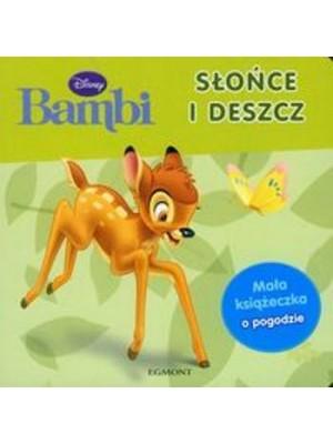 Bambi- soare si nor