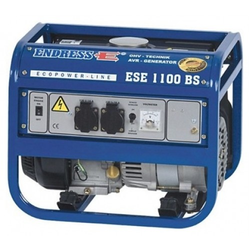 ENDRESS ESE 1100 BS
