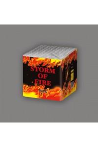 Фейерверк Storm of Fire TB58