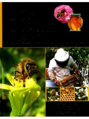 Все о пчелах и пчеловодстве
