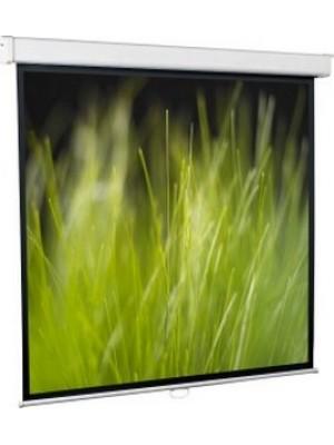 Проекционный экран Redleaf GoldView SGM-1106 (240x240см)