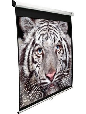 "Проекционный экран Elite Screens 119""(1:1) 213,4x213,4cm White"
